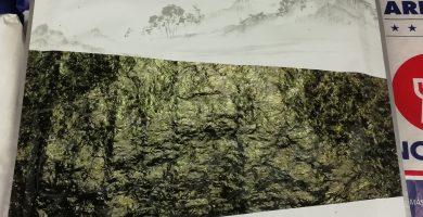 alga nori mercadona
