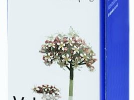 Valeriana mercadona deliplus